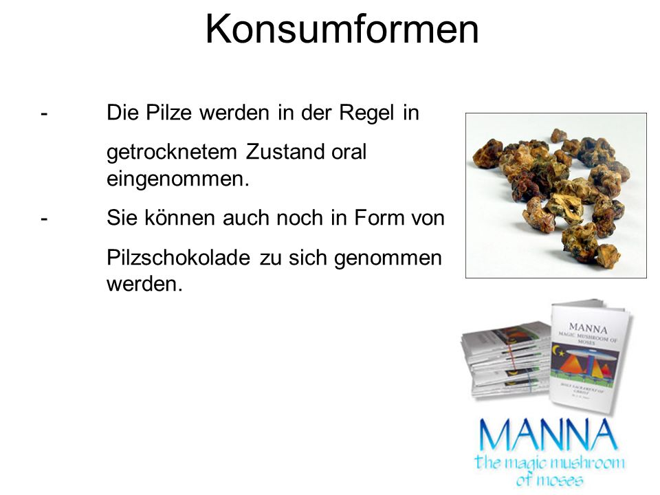 Konsumformen - Die Pilze werden in der Regel in