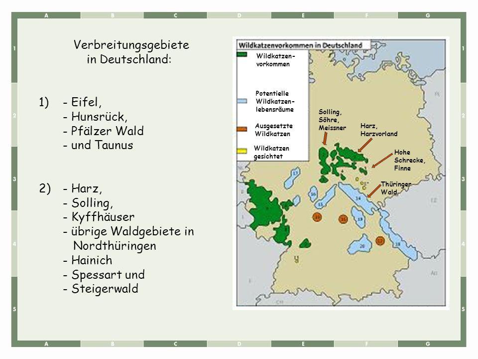 - übrige Waldgebiete in Nordthüringen - Hainich - Spessart und
