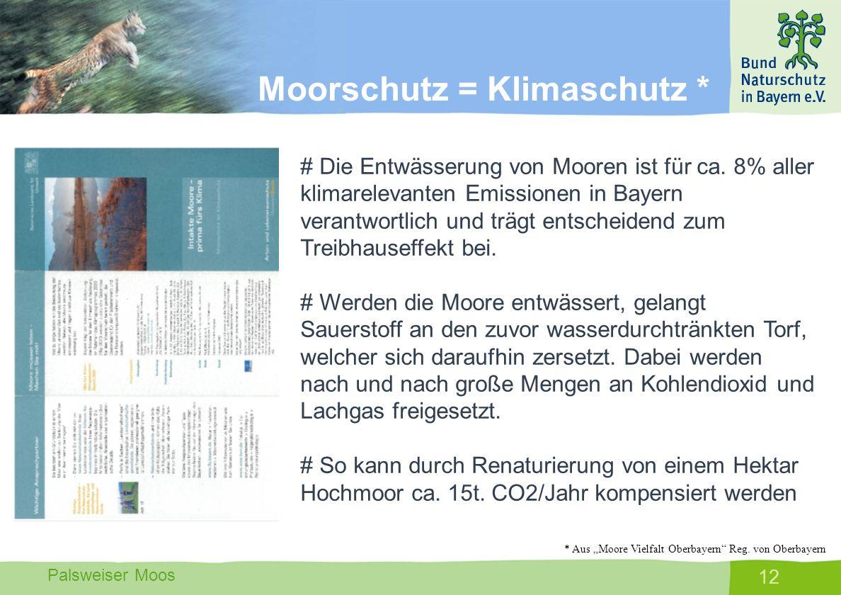 Moorschutz = Klimaschutz *
