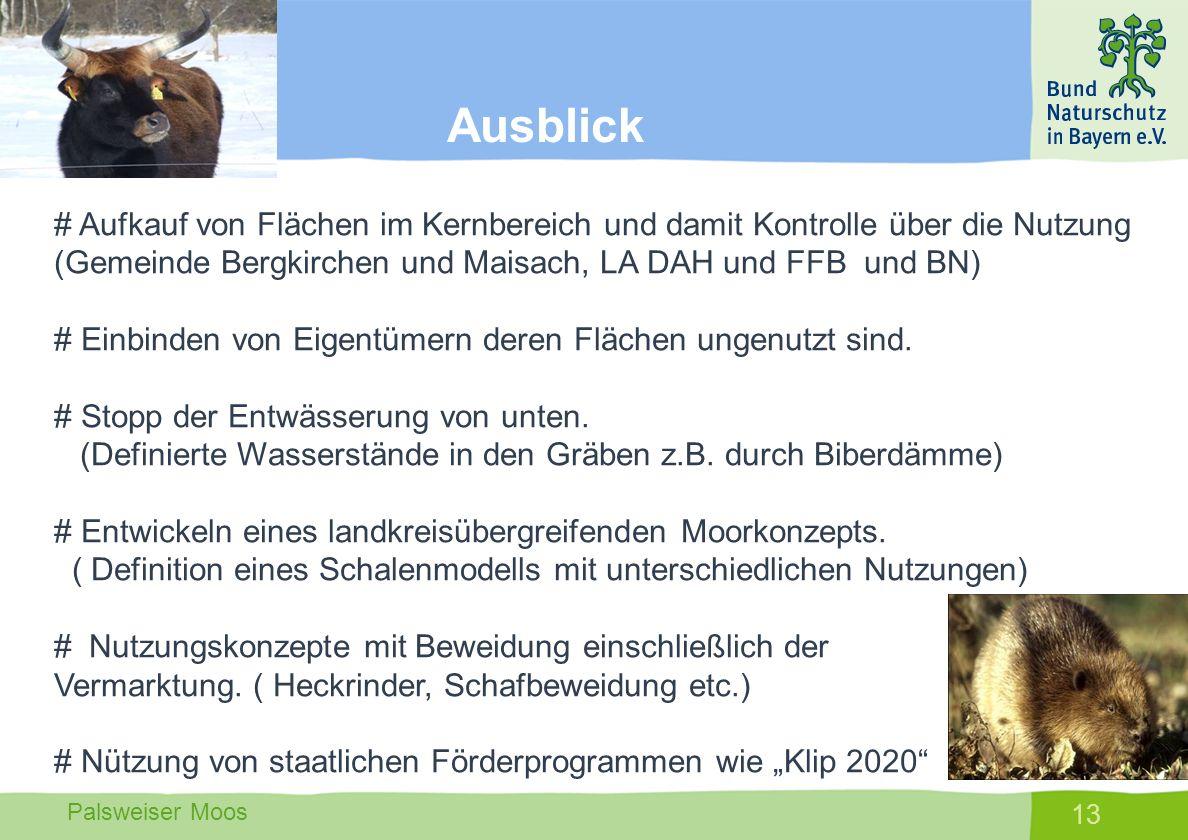 Ausblick # Aufkauf von Flächen im Kernbereich und damit Kontrolle über die Nutzung (Gemeinde Bergkirchen und Maisach, LA DAH und FFB und BN)