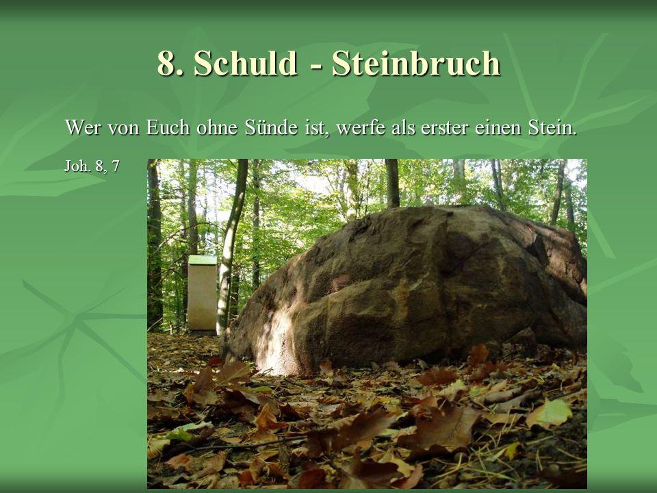 8. Schuld - Steinbruch Joh. 8, 7