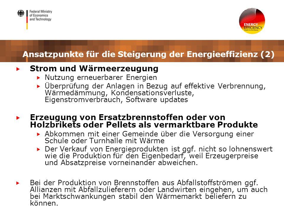 Ansatzpunkte für die Steigerung der Energieeffizienz (2)