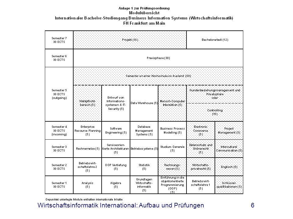 Wirtschaftsinformatik International: Aufbau und Prüfungen