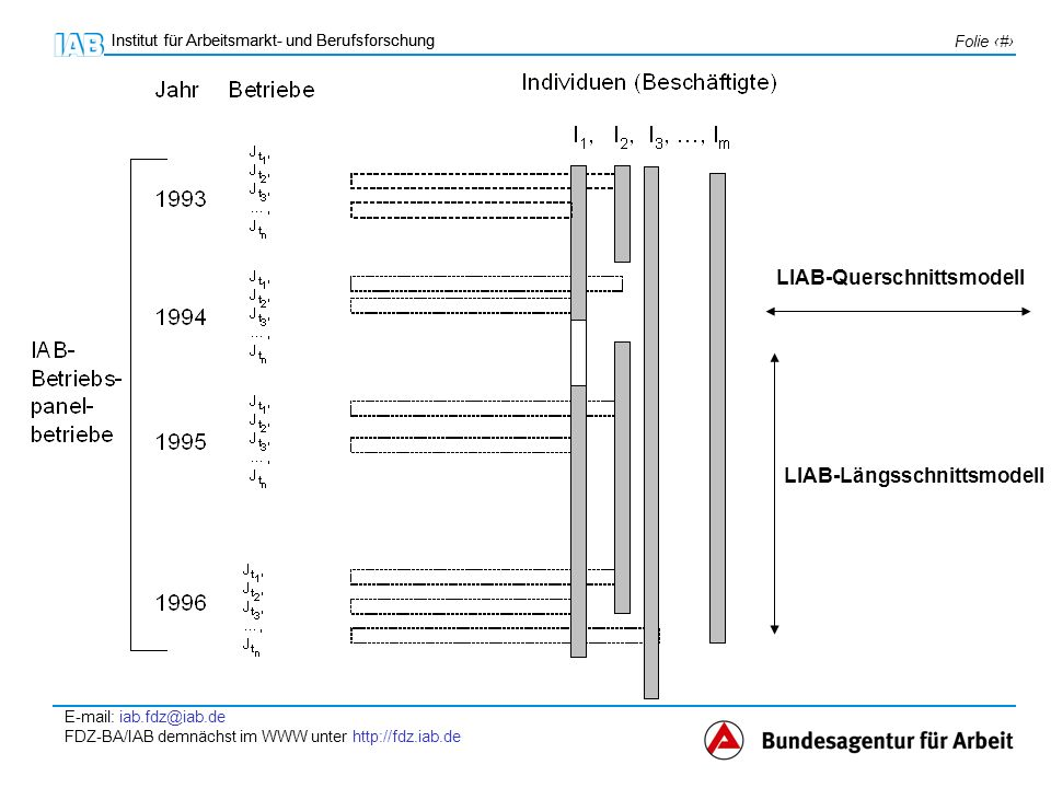 LIAB-Querschnittsmodell