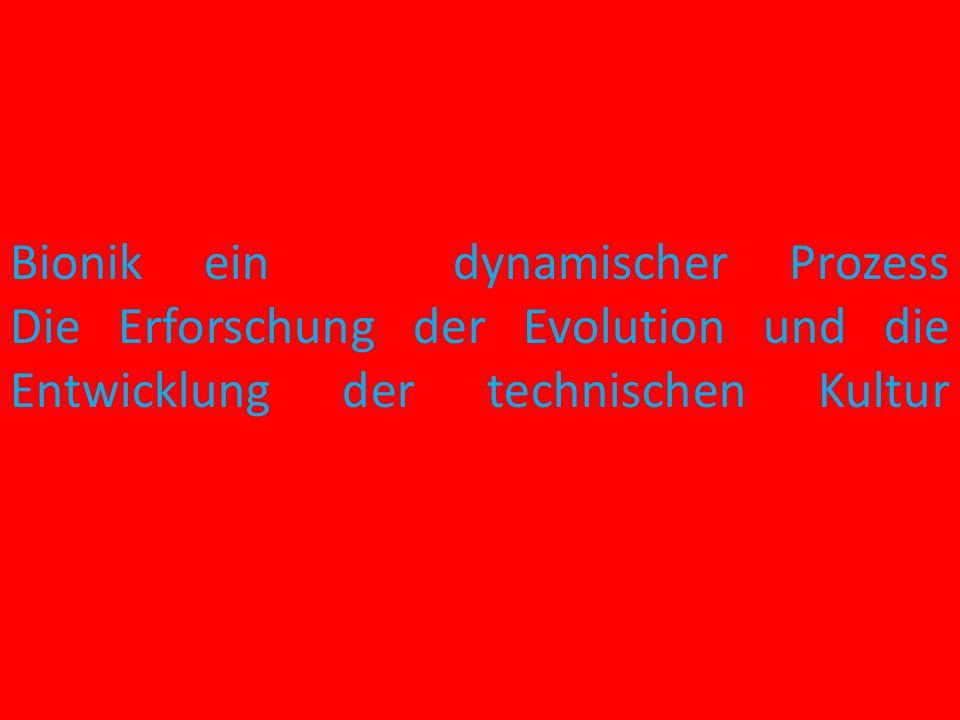 Bionik ein dynamischer Prozess Die Erforschung der Evolution und die Entwicklung der technischen Kultur
