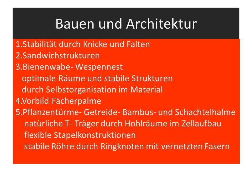 Bauen und Architektur 1.Stabilität durch Knicke und Falten
