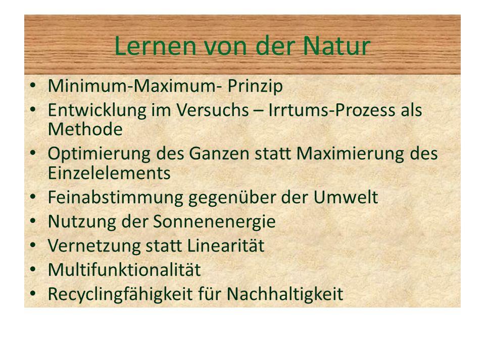 Lernen von der Natur Minimum-Maximum- Prinzip