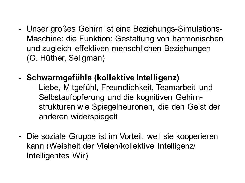 Unser großes Gehirn ist eine Beziehungs-Simulations-Maschine: die Funktion: Gestaltung von harmonischen und zugleich effektiven menschlichen Beziehungen (G. Hüther, Seligman)