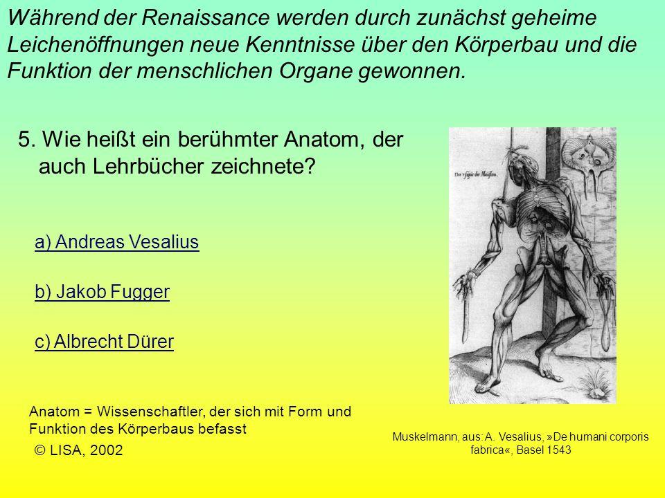 Muskelmann, aus: A. Vesalius, »De humani corporis fabrica«, Basel 1543