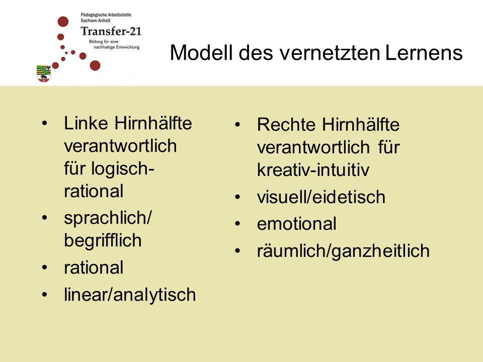 Modell des vernetzten Lernens