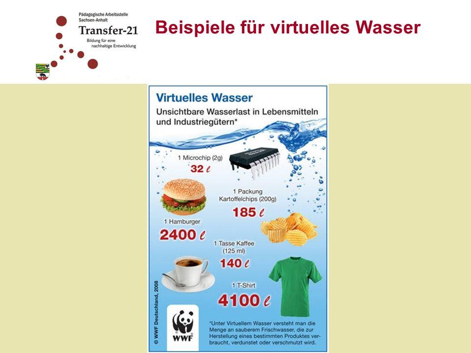 Beispiele für virtuelles Wasser