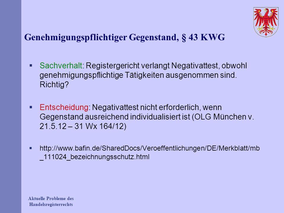 Genehmigungspflichtiger Gegenstand, § 43 KWG