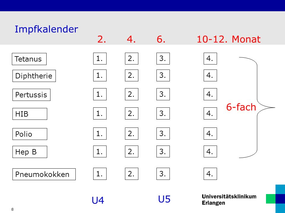 Impfkalender 2. 4. 6. 10-12. Monat 6-fach U5 U4 Tetanus 1. 2. 3. 4.