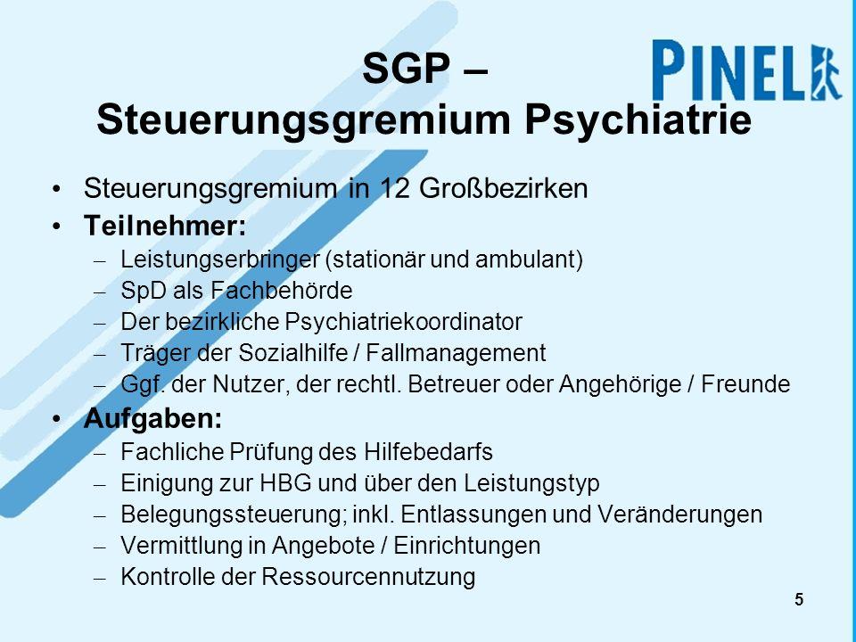 SGP – Steuerungsgremium Psychiatrie