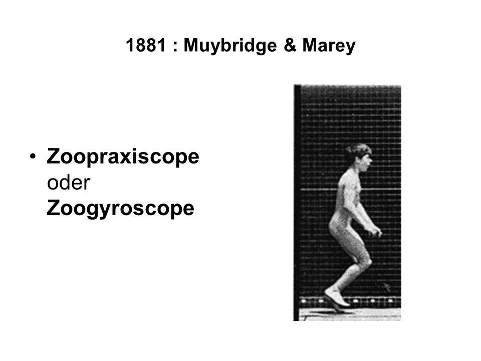 Zoopraxiscope oder Zoogyroscope