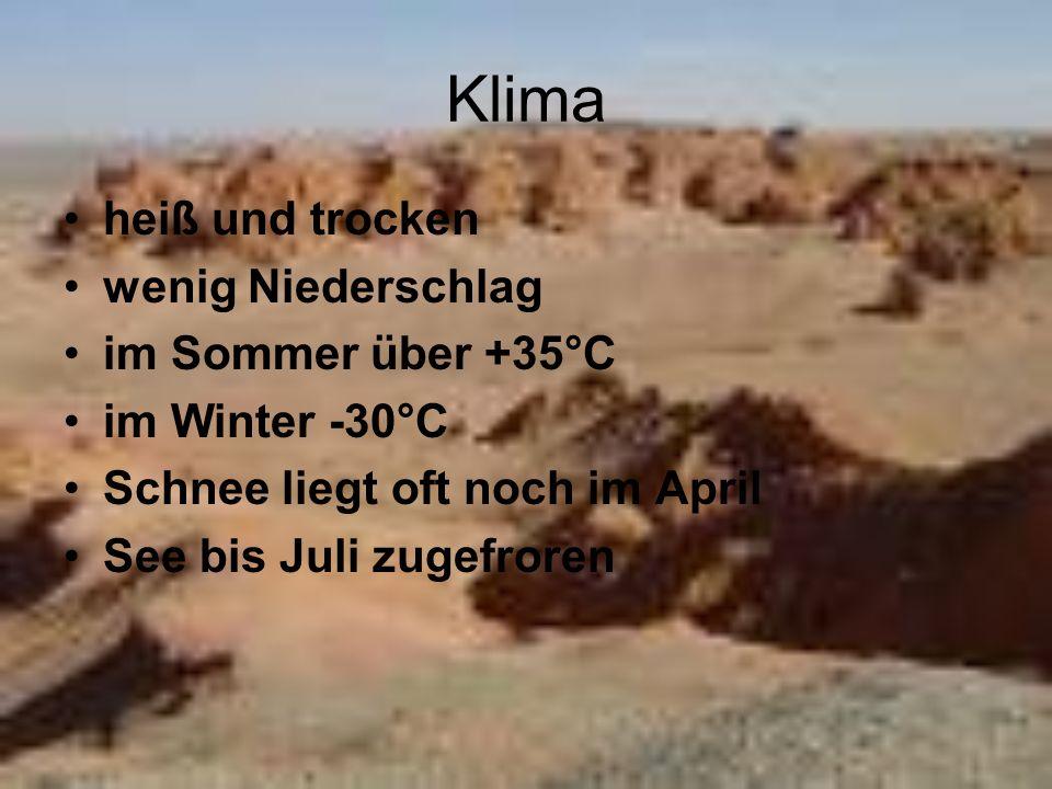 Klima heiß und trocken wenig Niederschlag im Sommer über +35°C