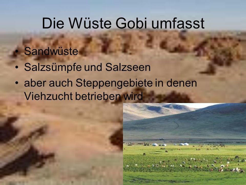 Die Wüste Gobi umfasst Sandwüste Salzsümpfe und Salzseen