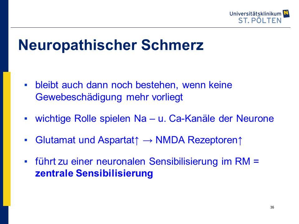 Neuropathischer Schmerz