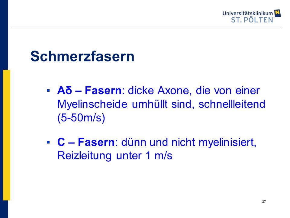 Schmerzfasern Aδ – Fasern: dicke Axone, die von einer Myelinscheide umhüllt sind, schnellleitend (5-50m/s)