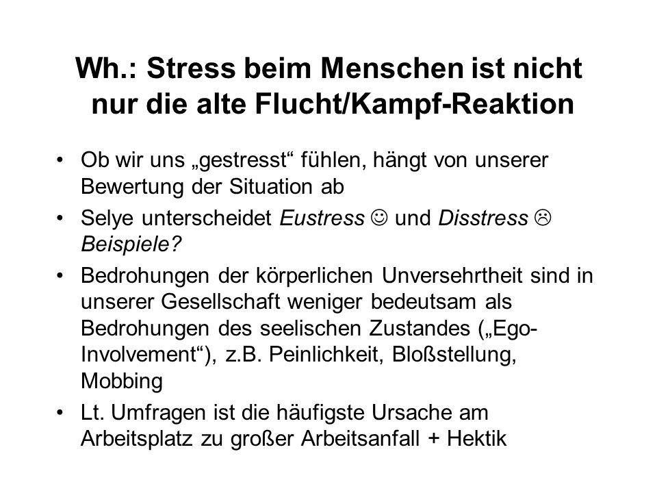 Wh.: Stress beim Menschen ist nicht nur die alte Flucht/Kampf-Reaktion