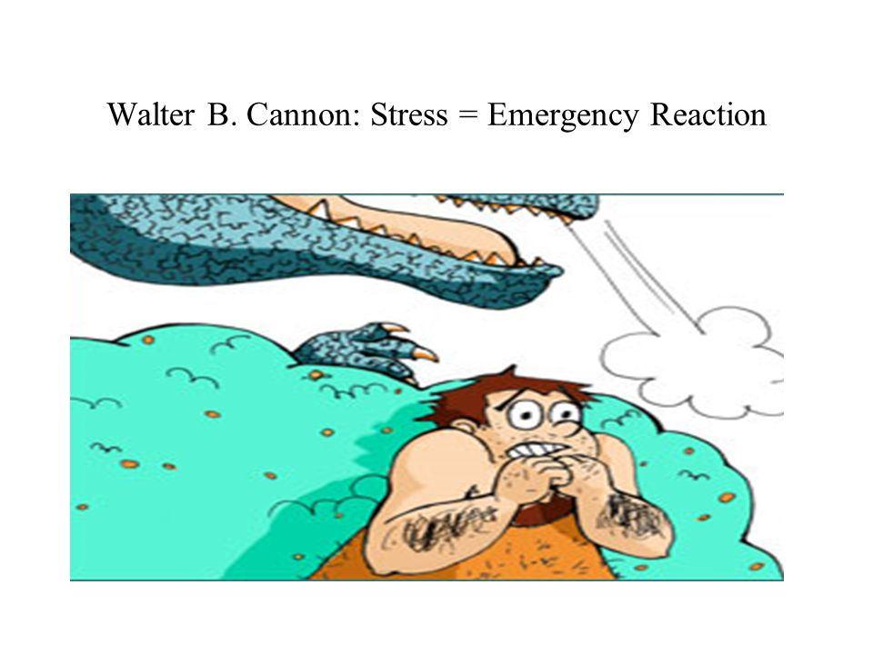 Walter B. Cannon: Stress = Emergency Reaction
