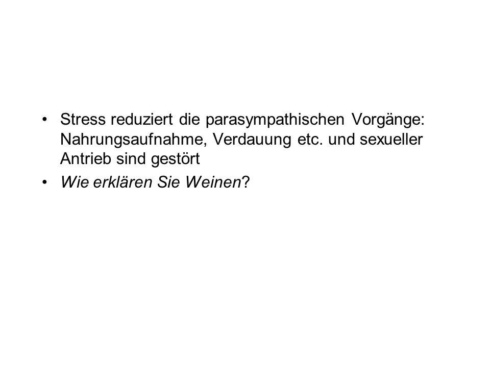 Stress reduziert die parasympathischen Vorgänge: Nahrungsaufnahme, Verdauung etc. und sexueller Antrieb sind gestört