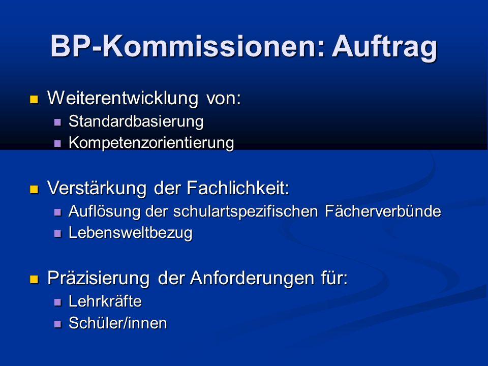 BP-Kommissionen: Auftrag
