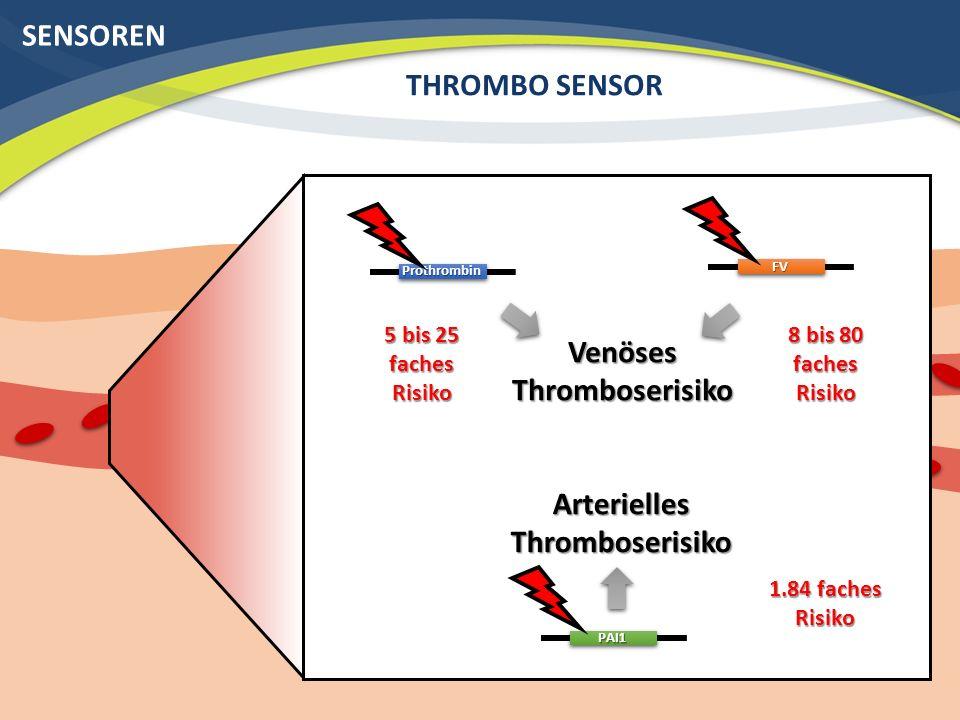 Venöses Thromboserisiko Arterielles Thromboserisiko