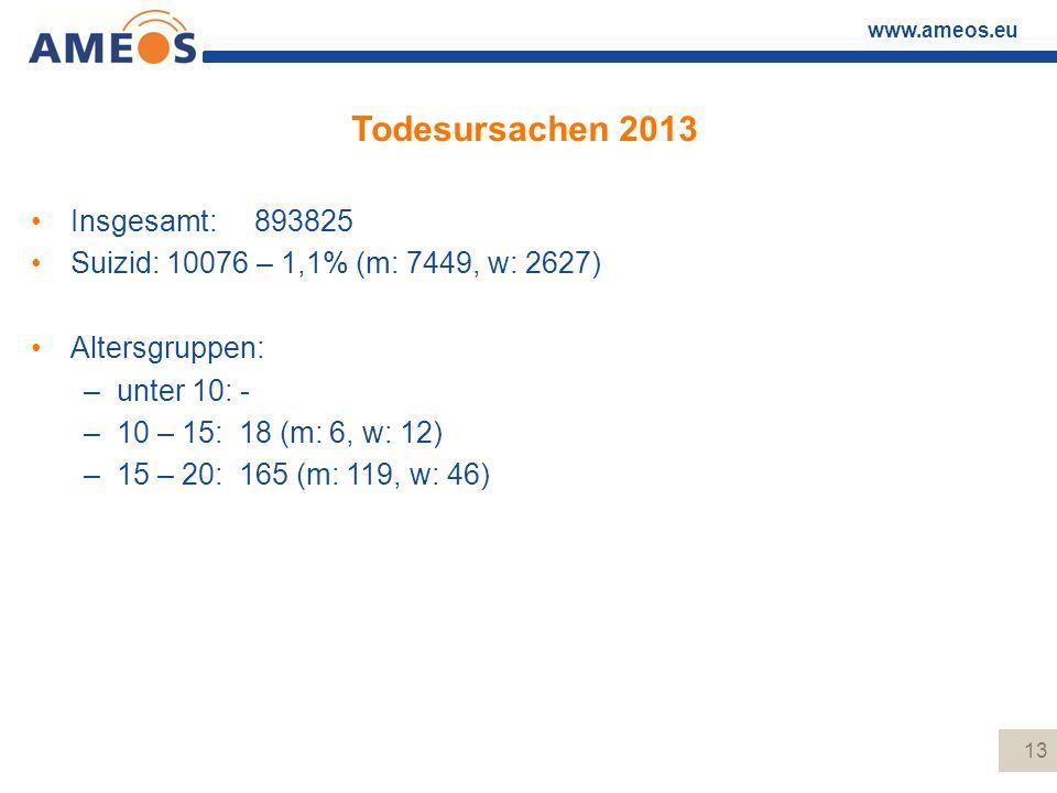 Todesursachen 2013 Insgesamt: 893825