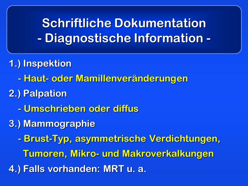 Schriftliche Dokumentation - Diagnostische Information -