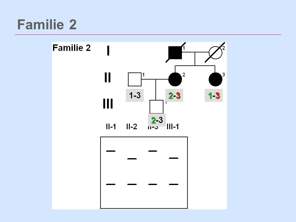 Familie 2 1-3 2-3 1-3 2-3