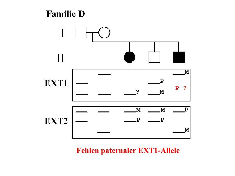 Fehlen paternaler EXT1-Allele