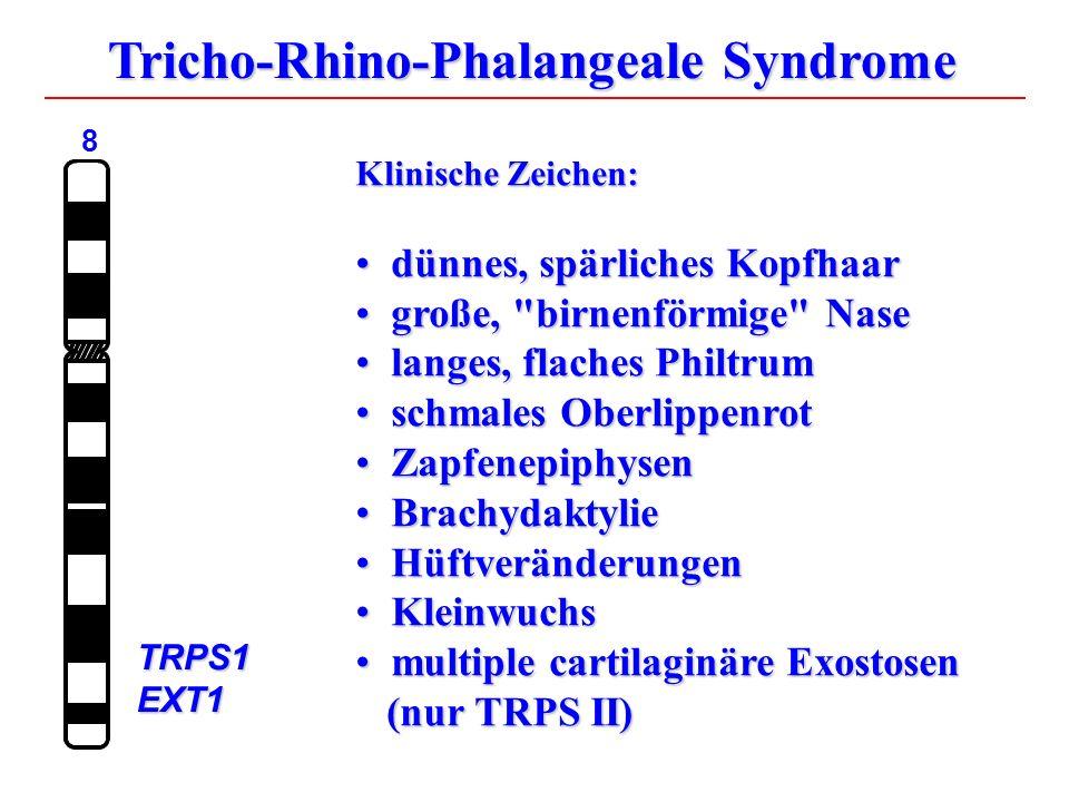Tricho-Rhino-Phalangeale Syndrome