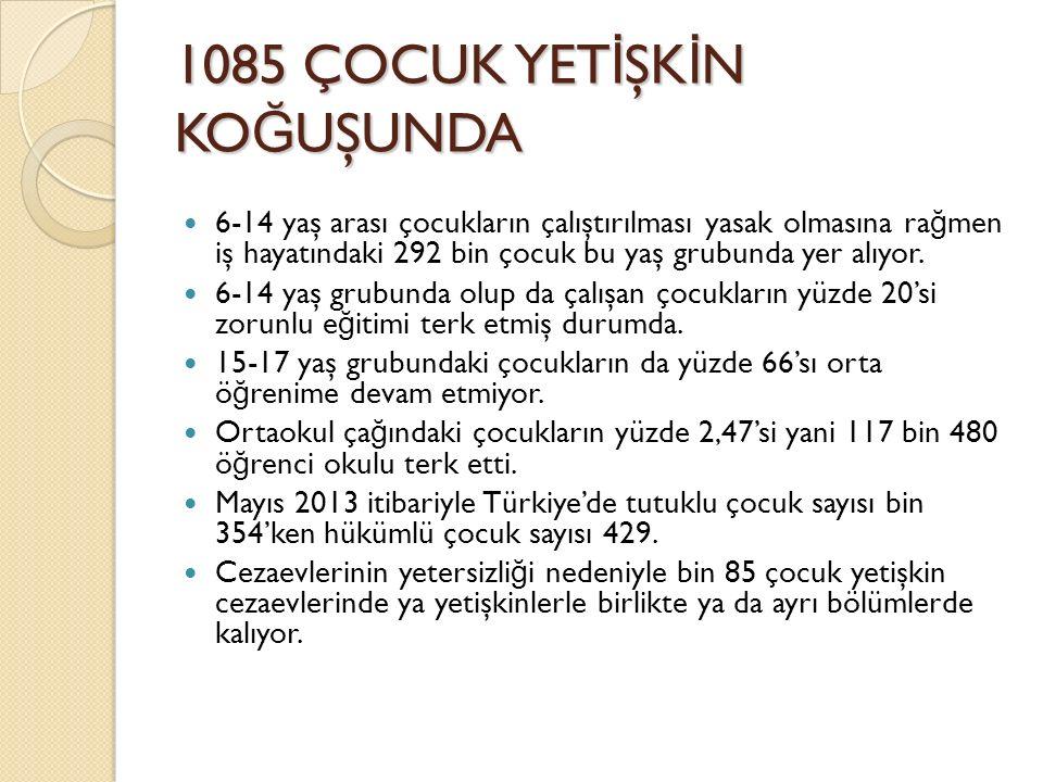 1085 ÇOCUK YETİŞKİN KOĞUŞUNDA