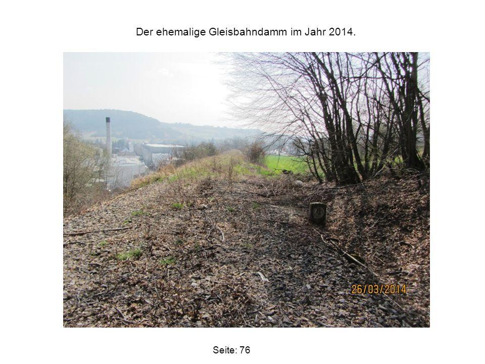 Der ehemalige Gleisbahndamm im Jahr 2014.