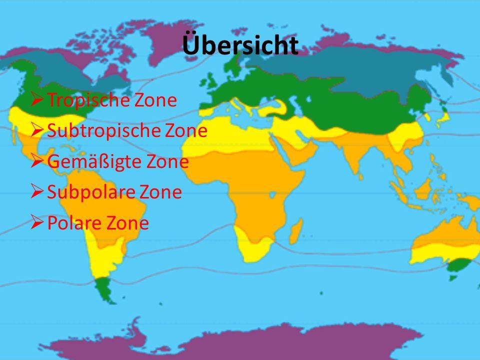 Übersicht Tropische Zone Subtropische Zone Gemäßigte Zone