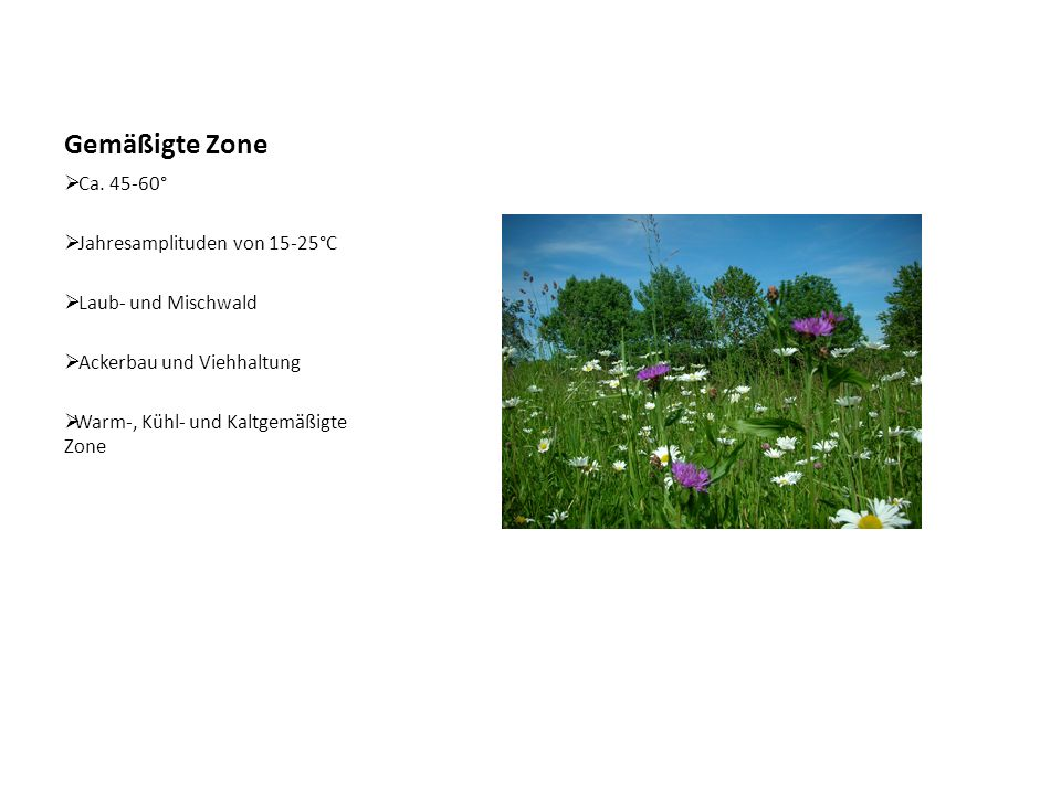 Gemäßigte Zone Ca. 45-60° Jahresamplituden von 15-25°C