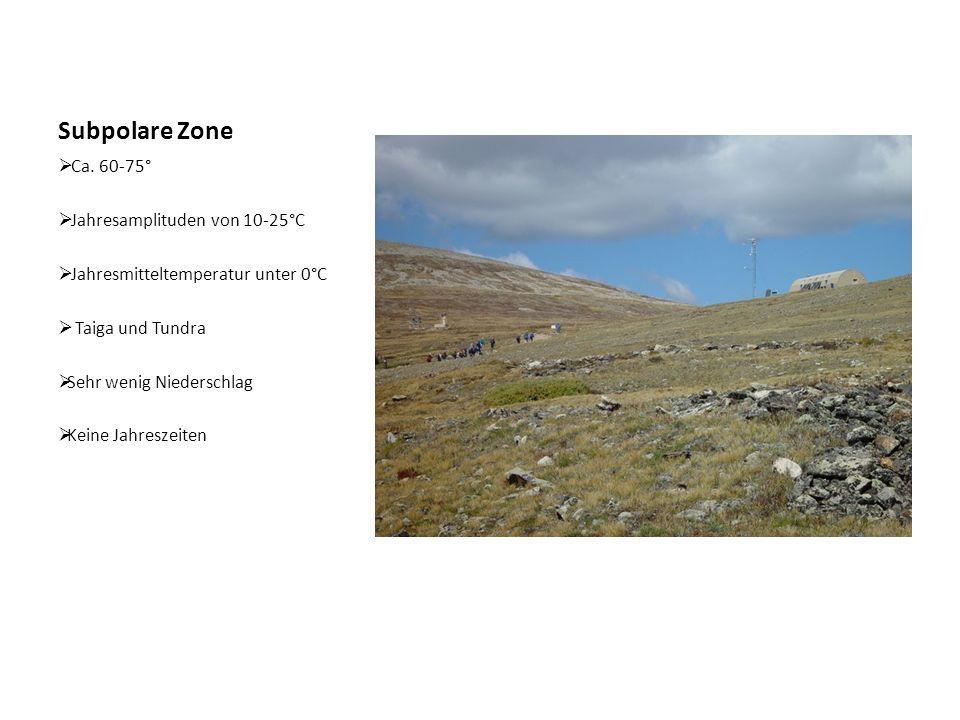 Subpolare Zone Ca. 60-75° Jahresamplituden von 10-25°C