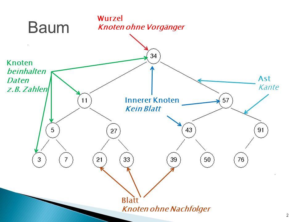Baum Wurzel Knoten ohne Vorgänger Knoten beinhalten Daten z.B. Zahlen