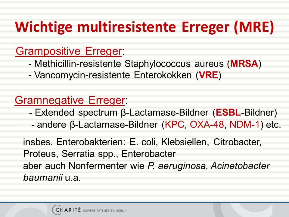 Hintergrund der neuen Empfehlungen für gramnegative MRE in der Charité