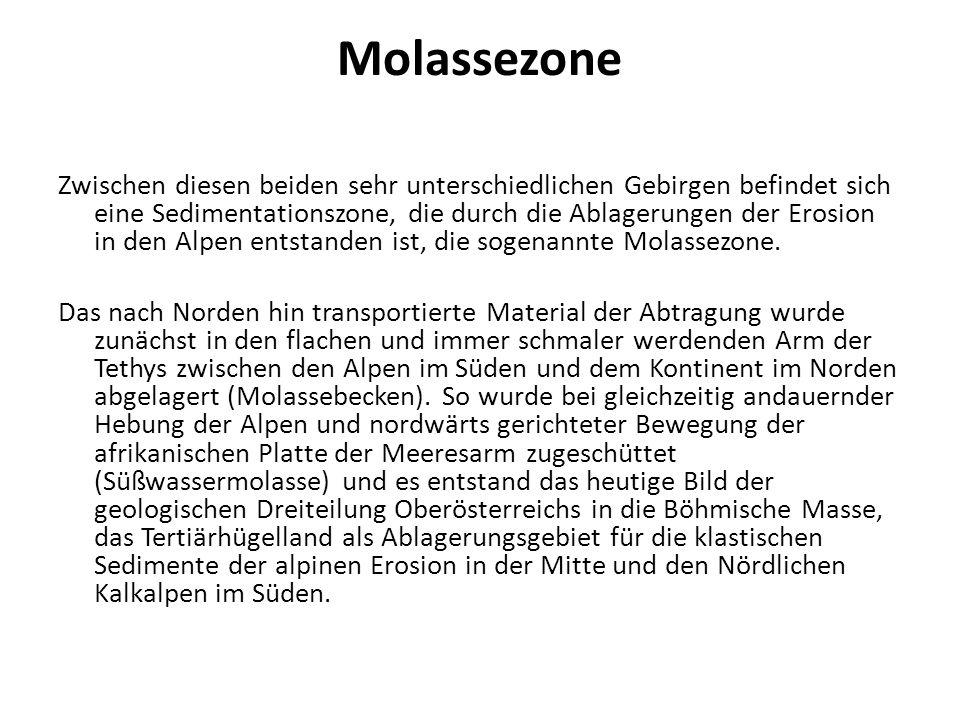 Molassezone