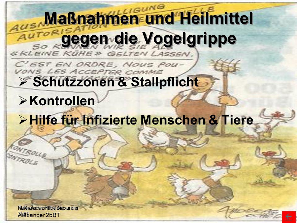 Maßnahmen und Heilmittel gegen die Vogelgrippe