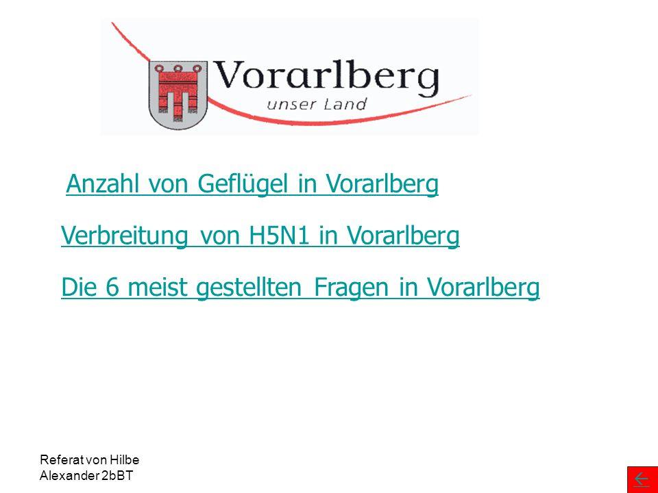 Anzahl von Geflügel in Vorarlberg