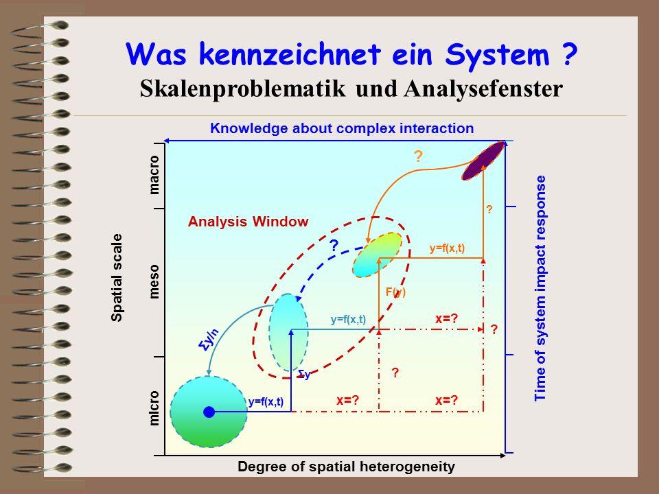 Was kennzeichnet ein System Skalenproblematik und Analysefenster