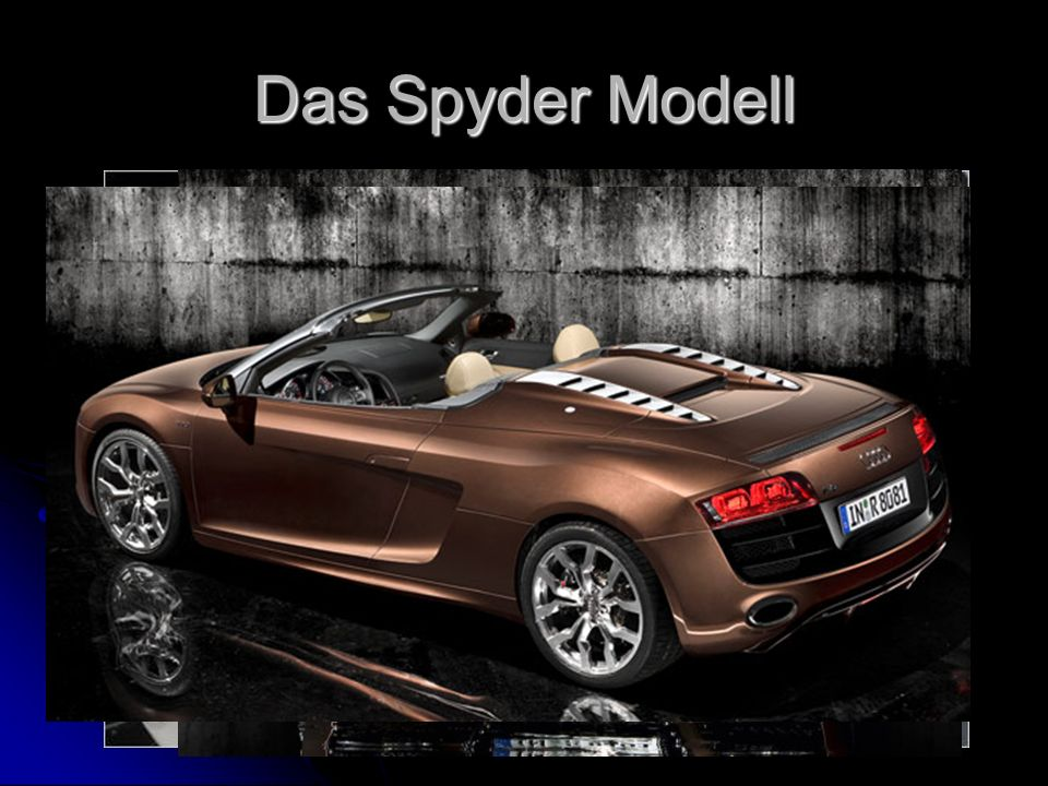 Das Spyder Modell