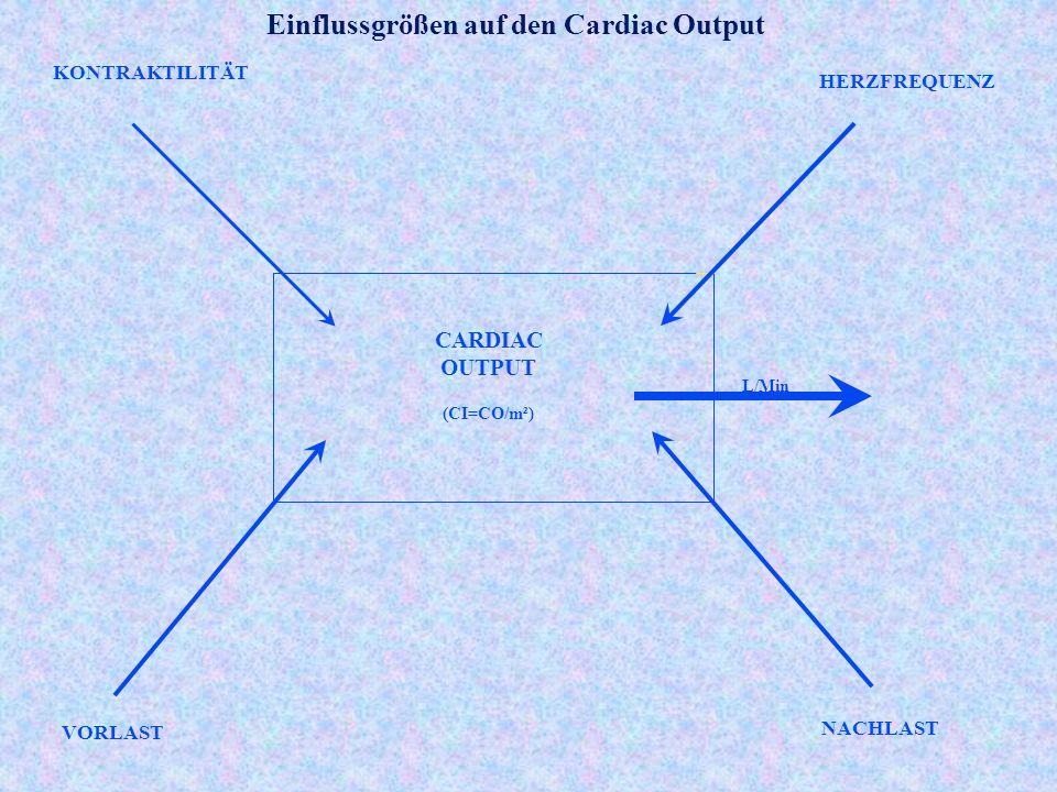 Einflussgrößen auf den Cardiac Output