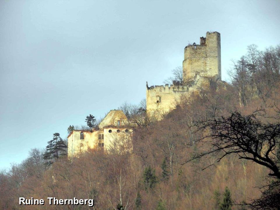 Ruine Thernberg