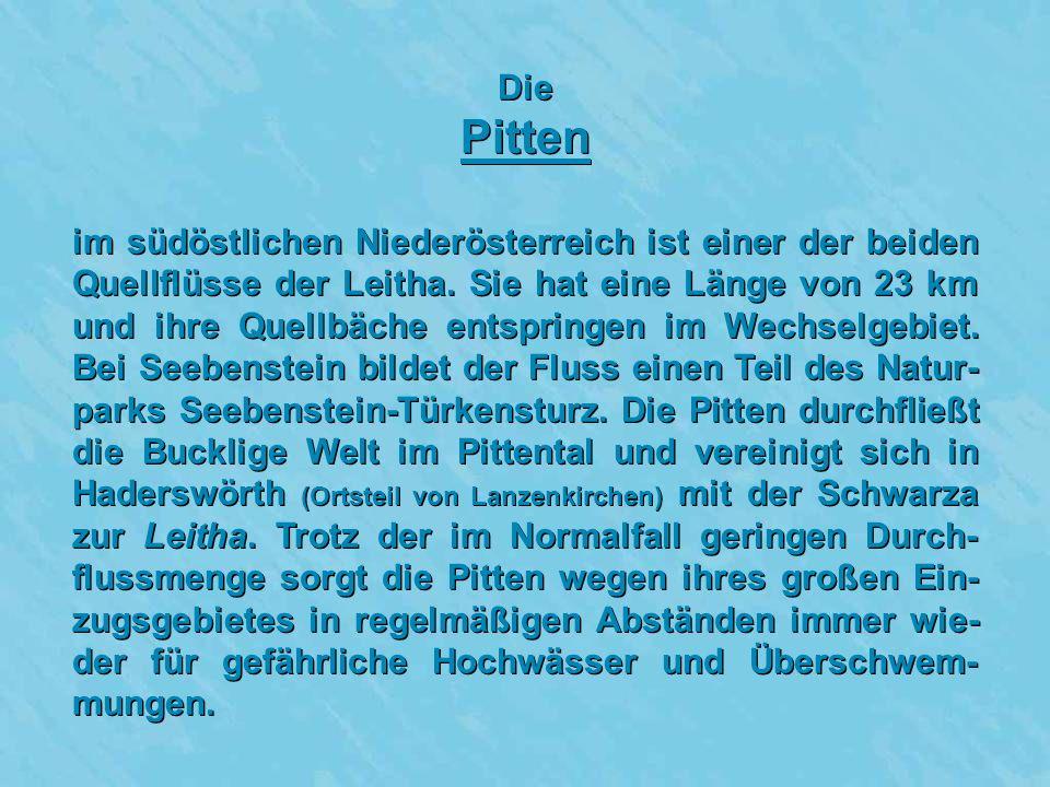 Die Pitten.
