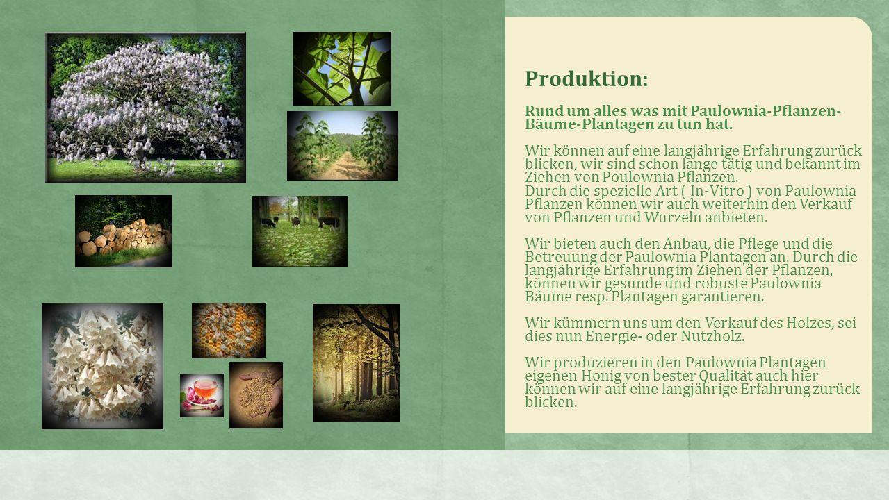 Produktion: