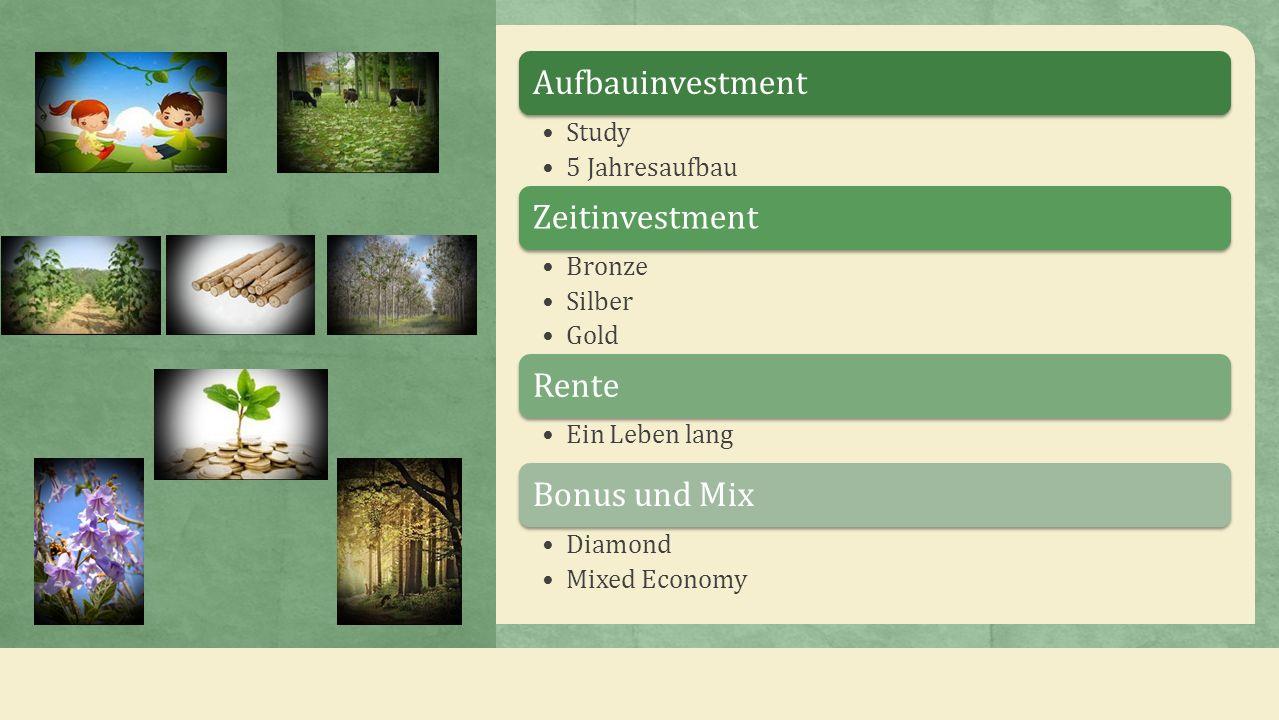Aufbauinvestment Study. 5 Jahresaufbau. Zeitinvestment. Bronze. Silber. Gold. Rente. Ein Leben lang.